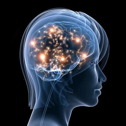 Brain and Neurotransmitter Balancing