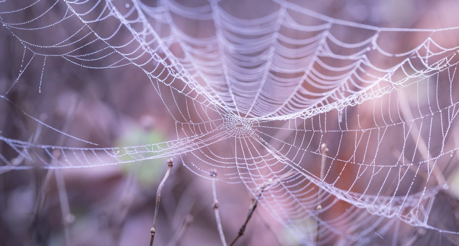 Clear Out The Energetic Cobwebs