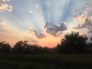 Peaceful Meadow Sunset